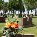 Cemetery Photo's photo album thumbnail 7